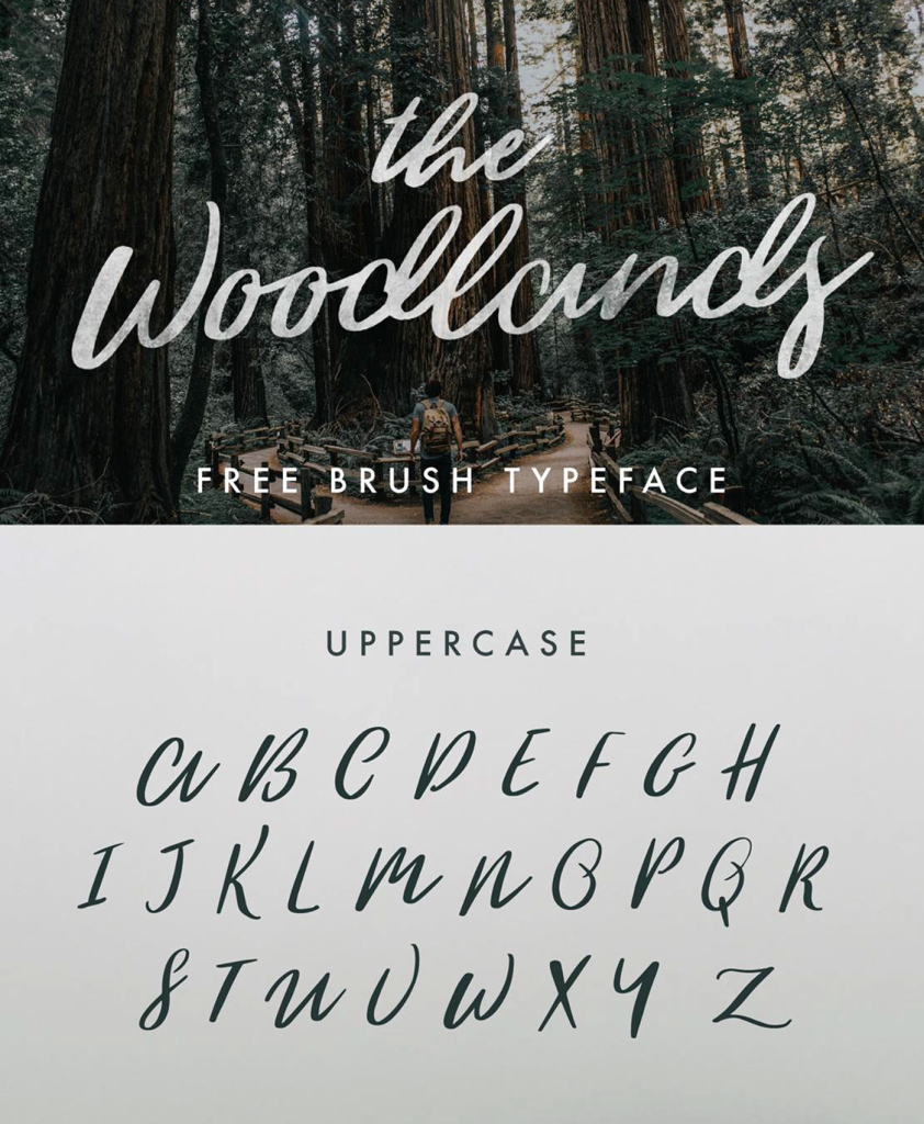 the-woodland