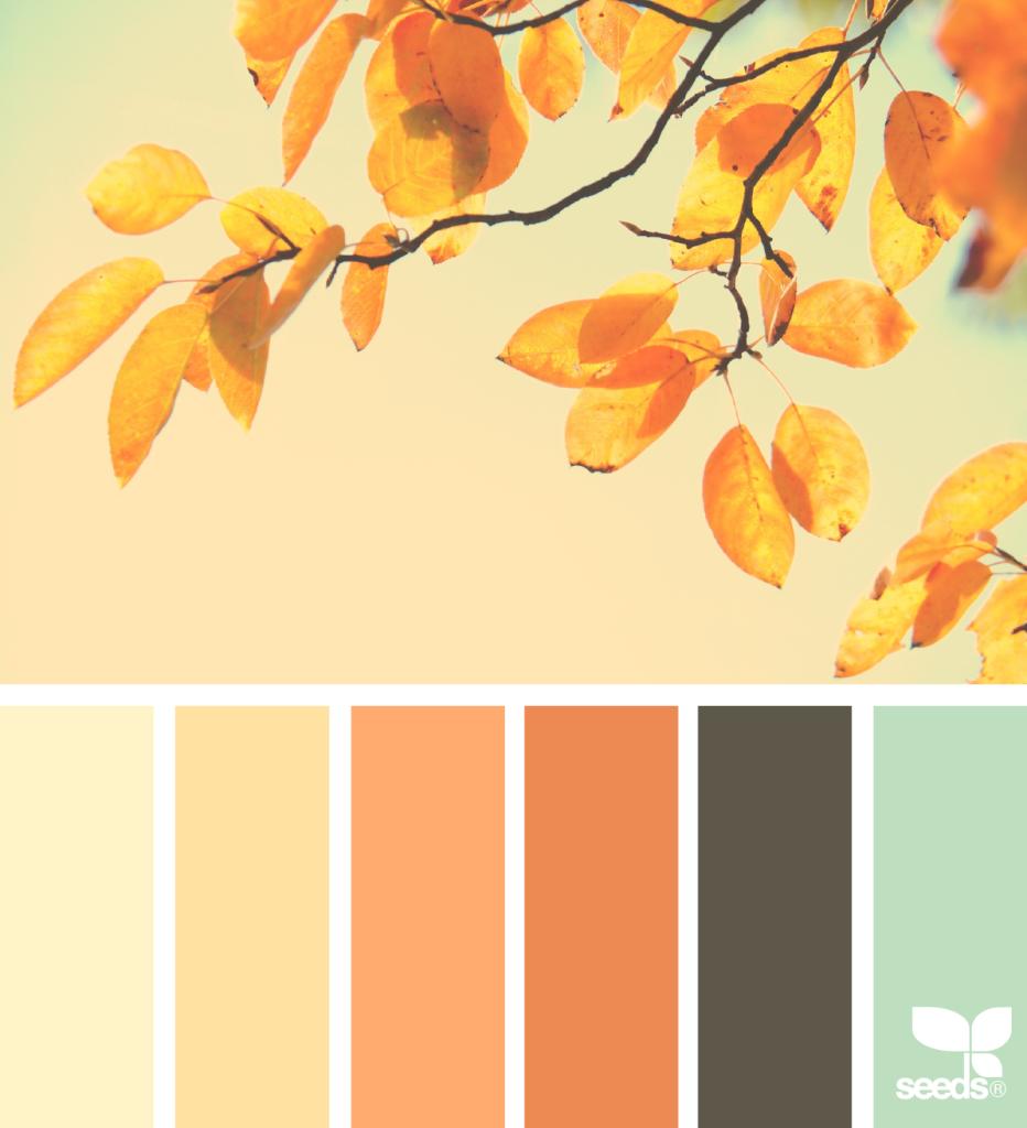 (Fonte/Foto: Seeds - { color season } image via: @marjamatkalla)